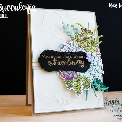 Stampin' Up! ~ Potted Succulents ~ Embossed Cards