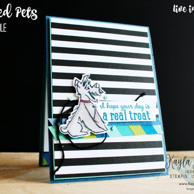 Stampin' Up! ~ Pampered Pets ~ Birthday Card