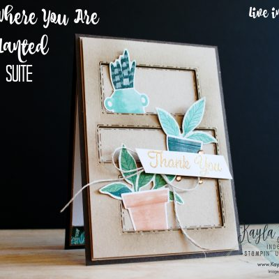 Stampin' Up! ~ Bloom Where You Are Planted ~ Thank You